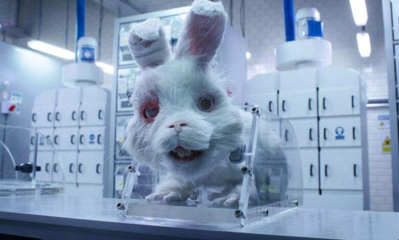 """Save Ralph"""" el crudo cortometraje que te muestra el testeo en animales"""
